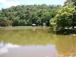 Lago do Parque