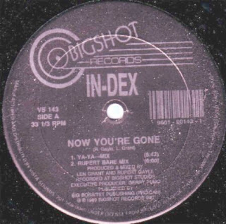 In-Dex - Now You're Gone