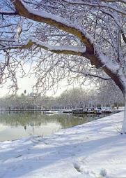 Χιόνια στην Παμβώτιδα