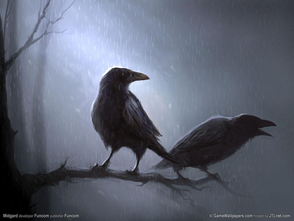 http://3.bp.blogspot.com/_AcrL3n6xGXs/TSX7zChj-0I/AAAAAAAAArc/W7SdA_-rMsY/s1600/ravens-wallpaper_blabla.jpg