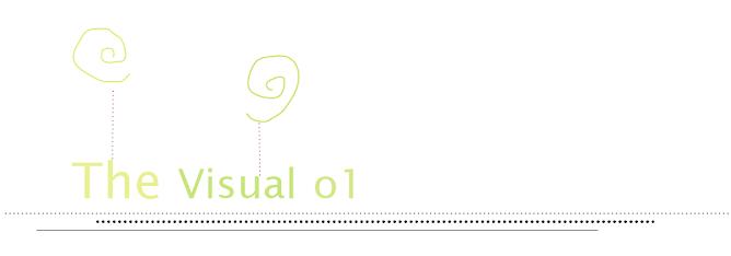 TheVisual o1