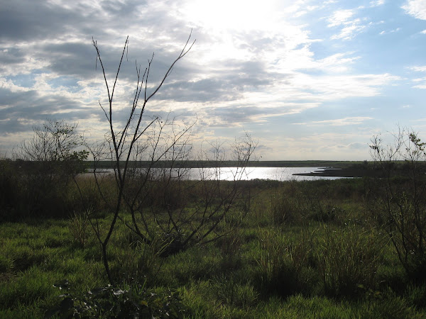 Lagoa preta, patrimônio ambiental
