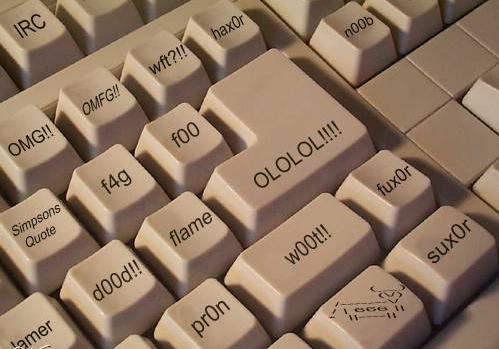 Digital Language Divide