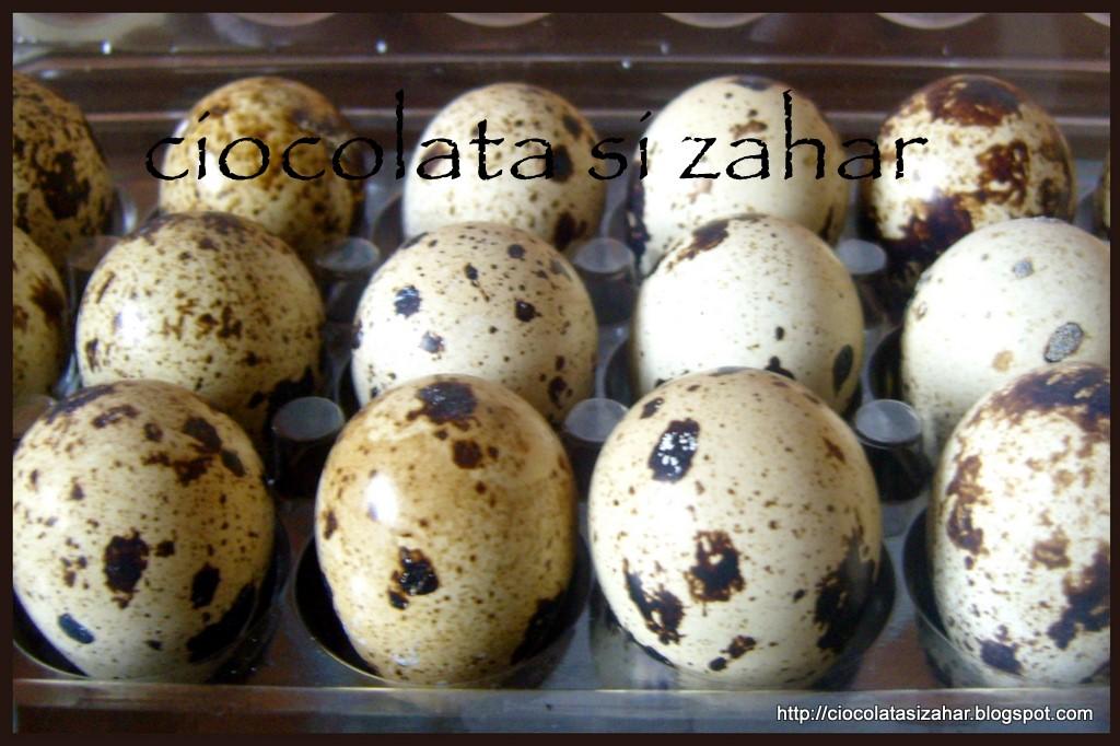 oua prepelita timp fierbere