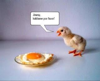 Imagen de Jimmy, hablame por favor!!!