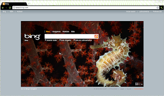Imagen de Google Chrome 7 versión para desarrolladores