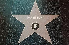Darth Puma's Stern