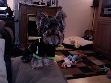 My Sweet Charlie
