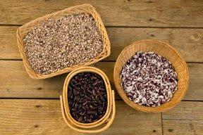 Rattlesnake beans, Christmas lima beans, Scarlet Runners