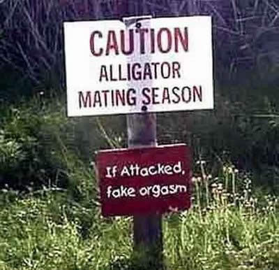 funny signs. Funny Signs For Wildlife