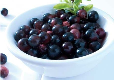 Possible Leukemia Cure in the Acai Berry - streetdirectory.com
