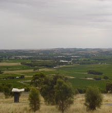 View from Mengler&#39;s Hill across the Barossa Valley