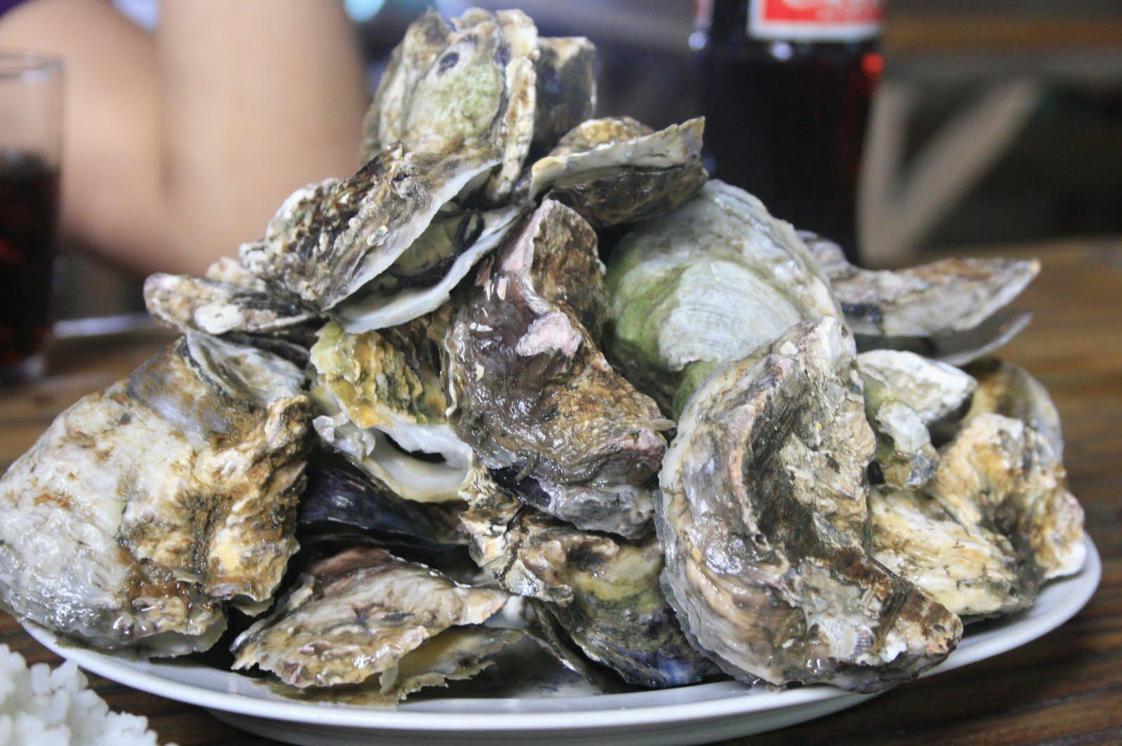 Good Seafood Restaurants In Islamorada 2