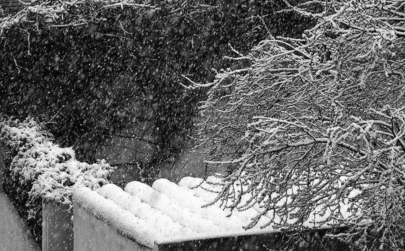 neu nieve snow teulada tejado roofnevada nevado snowy