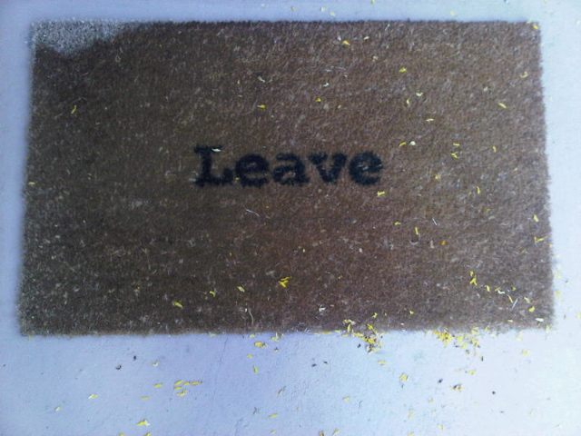 Only $29 for a Neat Step Mat. Super Absorbent, the Doormat Traps