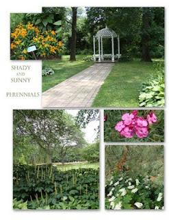 perennial garden displays