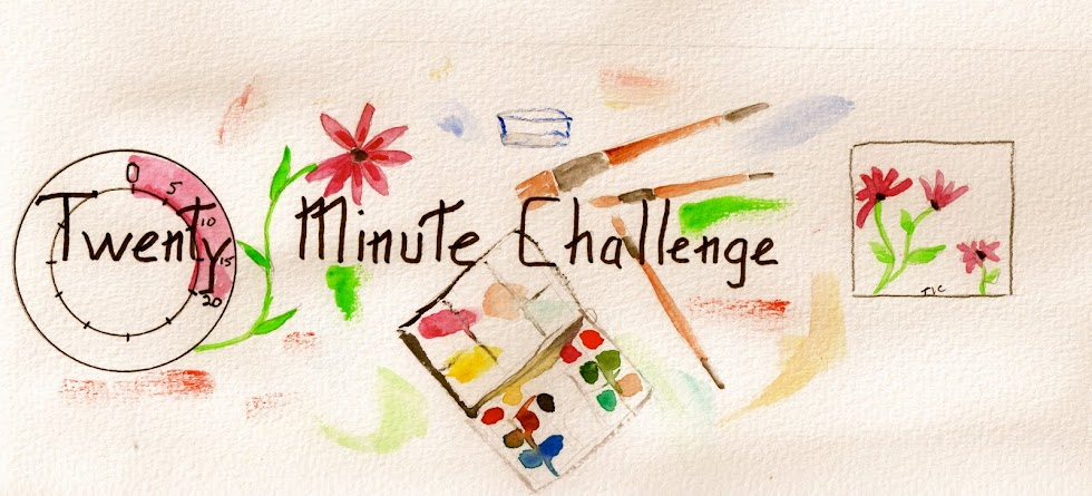 The Twenty Minute Challenge