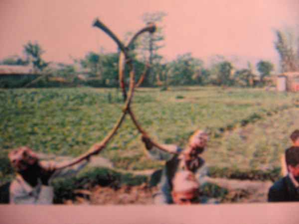5 The narsingha horns
