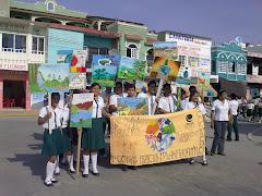 Proyectos Ecologicos 2010