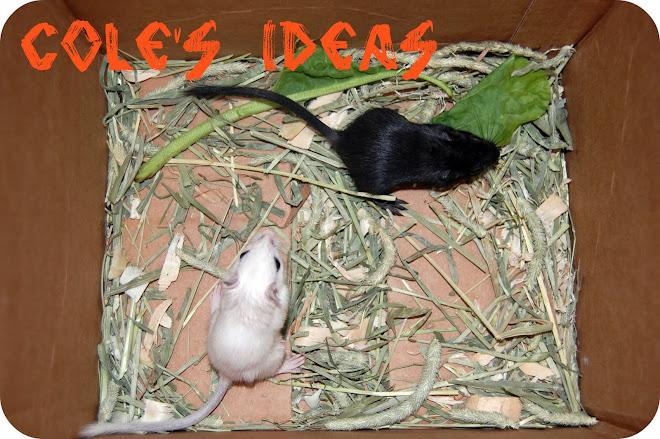 Cole's Ideas