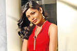 Freida PInto- Times of India feb 2010