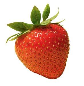 Gambar Buah Dada Wanita Montok http://genuardis.net/gambar/gambar-buah ...
