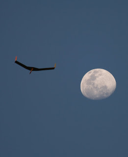 Not really PSS: Norbert's flying wing and the moon (focus on the moon) late Saturday afternoon - well worth the dash to the east slope when the wind picked up