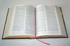 LA BUENA SEMILLA..VERSICULOS BIBLICOS DIARIOS...