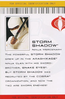 Storm Shadow, Ninja Mercenary