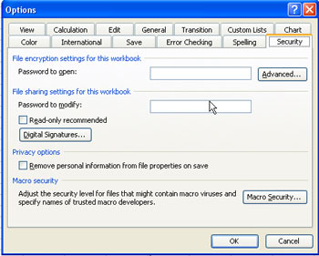how to open excel file with password