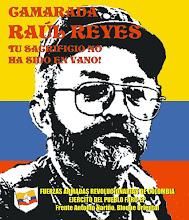 COLOMBIA ¡ Basta de mentiras !