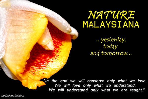 Nature Malaysiana