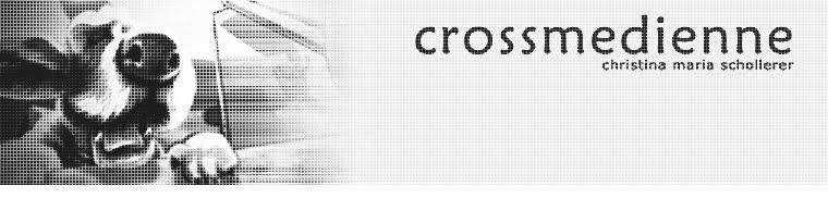 crossmedienne - portfolio von christina maria schollerer