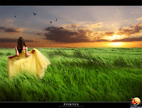 Làm thế nào để biết rằng ta đã hết yêu ai đó?, nhung buc thu tinh haym.org, buc thu tinh, la th