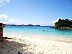 Snorkeling Beach on St. John's