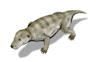 Thrinaxodon_BW.jpg