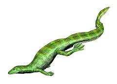 240px-Hovasaurus_BW.jpg