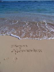 Simon & Alexander in Hawaii...