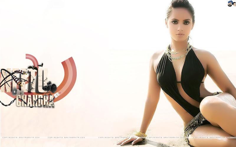 Neethu Chandra Hot Sexy Wallpapers hot photos