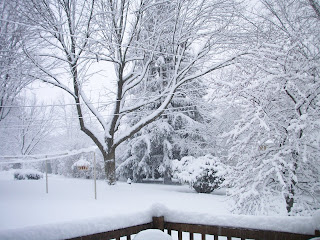 another view of the snow from Kari's backdoor