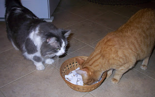 Annie & Jasper are checking the basket full of paper slips with names for the drawing