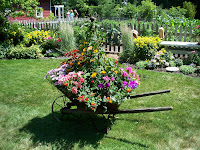 antique wheelbarrow full of flowers