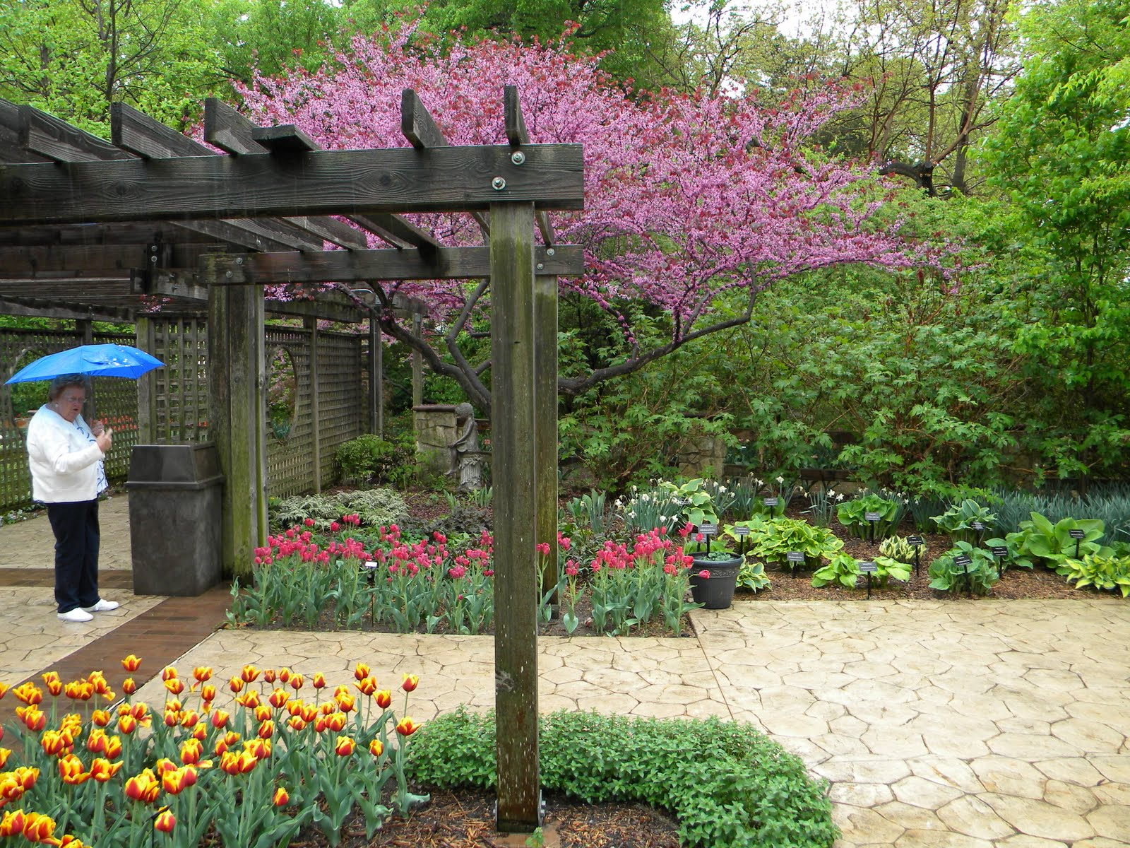 Ralston Ramblings Botanica The Wichita Gardens In Bloom