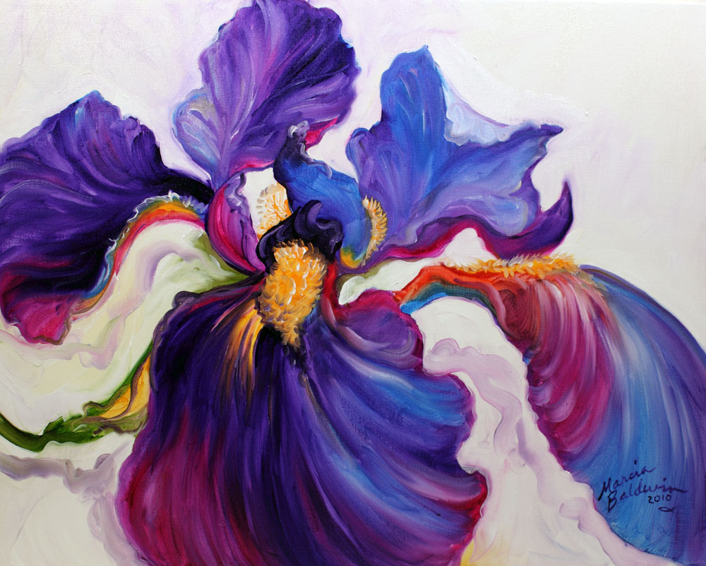 American art moves iris serenity an original oil painting by iris serenity an original oil painting by marcia baldwin izmirmasajfo