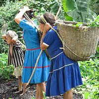 Indigenas Embera Chamí