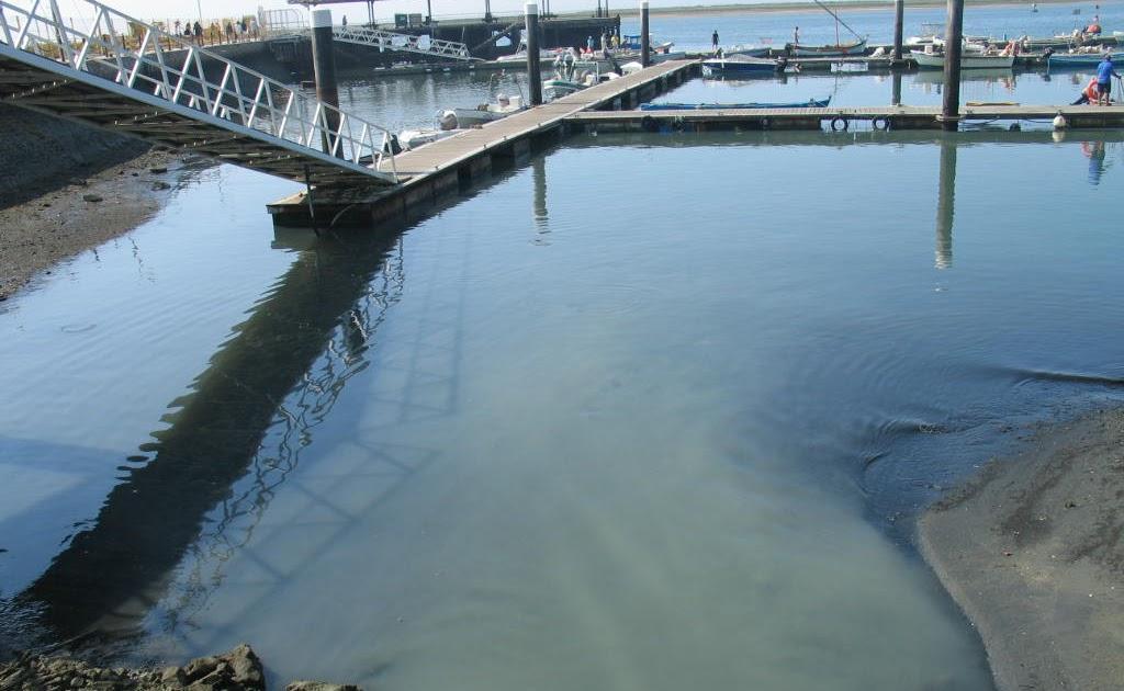 Image result for fotos da poluição da Ria Formosa em Olhão