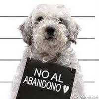 PETA (Ayuda a los animales)