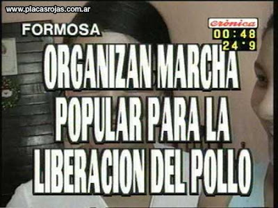 imagenes y videos graciosos de cronica tv