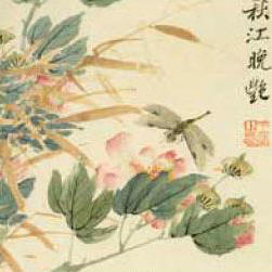 In Japan Dragonflies Are Symbols Of Courage Strength And Happiness They Often Appear Art Literature Especially Haiku
