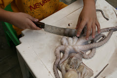 Clay cutting octopus